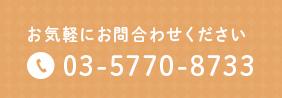 お気軽にお問合わせください 03-5770-8733